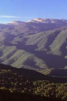 地平線にコシウスコ山を望む夏の風景