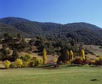 ブリンダベラ山脈と農家