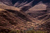 フィンク渓谷国立公