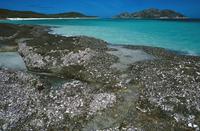 リザード島海岸 32240001757| 写真素材・ストックフォト・画像・イラスト素材|アマナイメージズ