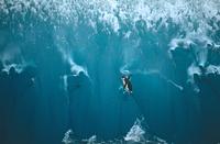 氷山から飛び降りるヒゲペンギン 32240002151| 写真素材・ストックフォト・画像・イラスト素材|アマナイメージズ