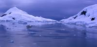 南極 パラダイス湾とクルーズ船