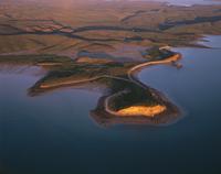 セントジョージ盆地 マングローブとイリエワニの生息地 32240003063| 写真素材・ストックフォト・画像・イラスト素材|アマナイメージズ