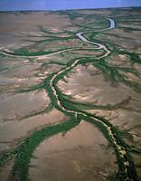 マングローブに囲まれた川と干潟と排水溝 空撮