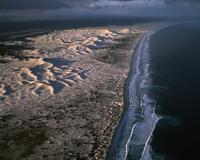 ビルブニヤ砂丘