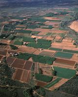 ジェラルトンの農地 果物と野菜の産地