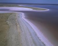 エア湖北部 塩湖 湖水は時にピンク色に変化する