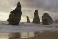 「12人の使徒」を背景に海に向かうコビトペンギン