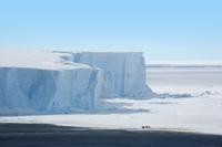 表面が横縞状の氷山を背景に立つコウテイペンギン(エンペラーペ