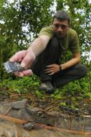 Schubotz's Squeaker Frog (Arthroleptis schubotzi) adult male