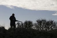 Rough shooting with a 12 bore shotgun 32259008405| 写真素材・ストックフォト・画像・イラスト素材|アマナイメージズ