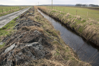 newly cleared ditch showing mud and reed spread over the ban 32259008419| 写真素材・ストックフォト・画像・イラスト素材|アマナイメージズ