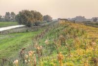 View along flood embankment on wetland nature reserve toward 32259008526| 写真素材・ストックフォト・画像・イラスト素材|アマナイメージズ