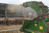 Cattle farming, blowing chopped straw for bedding in beef fi