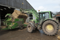 Cattle farming, tractor loading bale of straw into straw cho