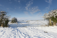 Galvanised metal gate in snow covered field entrance, Norfol