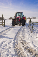 Massey Ferguson 5465 tractor with slurry tanker in snow, Chi