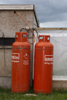 Gamebird farming, propane gas cylinders attached to pheasant