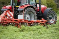 Massey Ferguson tractor with tedder working in field of newl