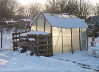 Snow covered urban allotment with greenhouse and compost bin