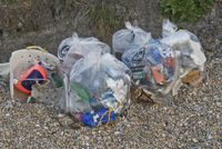 Rubbish collected from waste disposal and recycling from bea