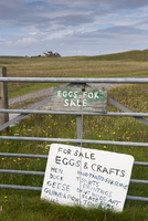 For Sale, Eggs and Crafts' sign on farm gate, Isle of Tiree,