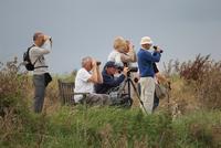 Elderly birdwatchers with binoculars and telescope, Titchwel