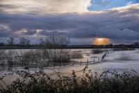 川の氾濫で水浸しになった農業地帯 32259008984| 写真素材・ストックフォト・画像・イラスト素材|アマナイメージズ