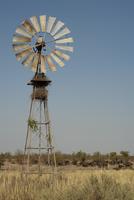 アフリカスイギュウ 32259008995| 写真素材・ストックフォト・画像・イラスト素材|アマナイメージズ