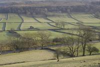石垣と川のある田園風景