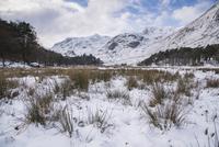 雪に覆われた高地の風景