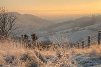 夜明け前の霜がおりた谷の風景