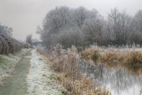 霜のおりた運河