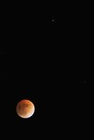 土星とレグルスと月