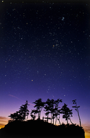 ボニーラポイント上空の星
