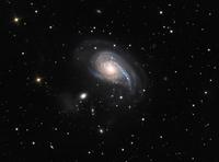 ���r���̉Q�����_�@NGC 772