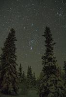 冬空のオリオン座
