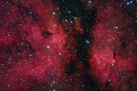 バタフライ星雲 IC1318