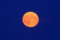 満月  32268000178| 写真素材・ストックフォト・画像・イラスト素材|アマナイメージズ