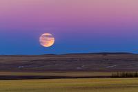 落日と同時に昇る満月 32268000183| 写真素材・ストックフォト・画像・イラスト素材|アマナイメージズ