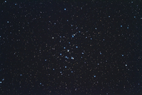 カニ座の M44 蜂の巣星団もしくはプレセぺ星団