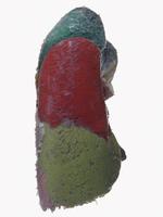 ヒトの左肺 背面から 気管支肺区域
