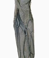 ヒトの左足の表面的な解剖 背面から