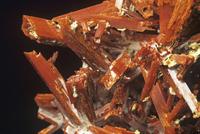 紅鉛鉱の結晶とデュンダス石