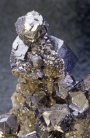 方鉛鉱の結晶と黄鉄鉱