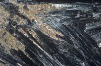 アスベスト(石綿)の陽起石形