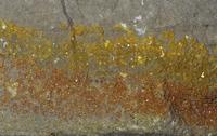 ベクレル石(ウラン鉱石の一種)