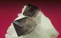 石英の中の灰重石の結晶