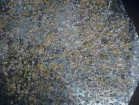 ニッケル鉄隕石のアップ