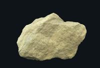 堆積岩 石灰岩